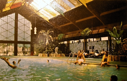 Postcard depicting the tropical pool at the Curtis Hotel and Motor Lounge