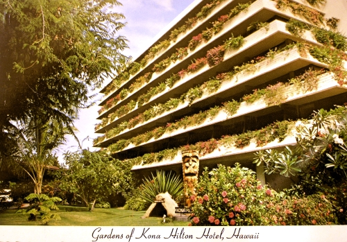 Postcard depicting the Gardens of Kona Hilton Hotel, Hawaii